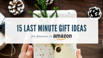 15 Last Minute Gift Ideas for Amazons on Amazon